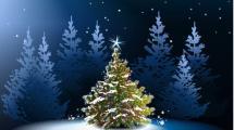 Rozsvícení vánočního stromu Hrádek