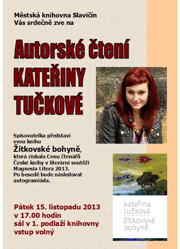 Plakát-K. Tučková 2013, obrázek se otevře v novém okně