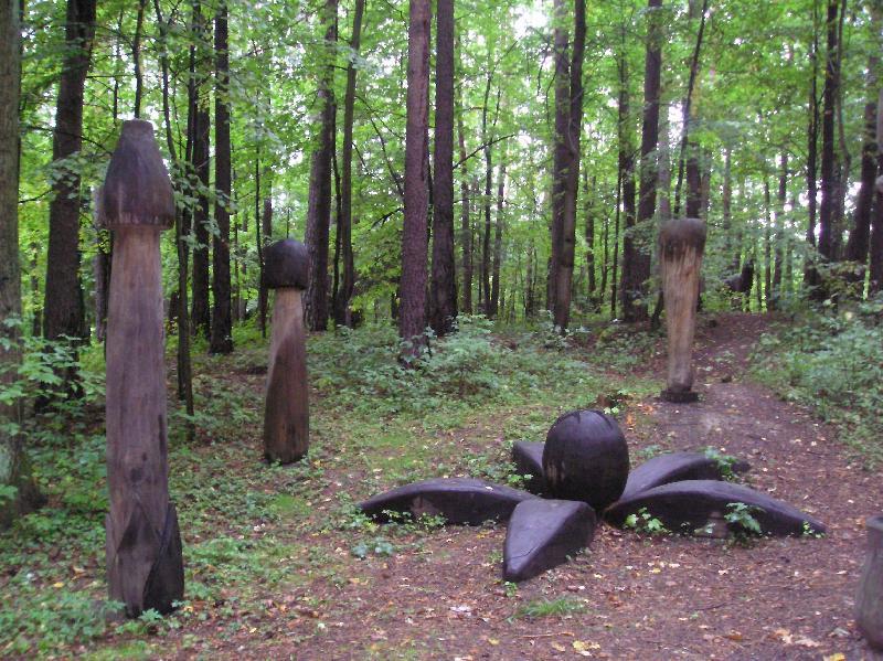 Pivečkův park   houby