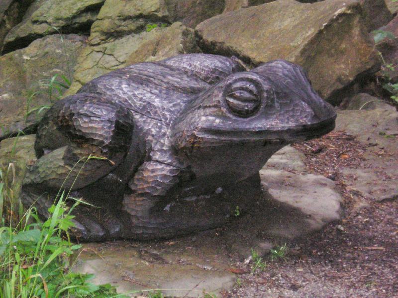 Pivečkův park   žába